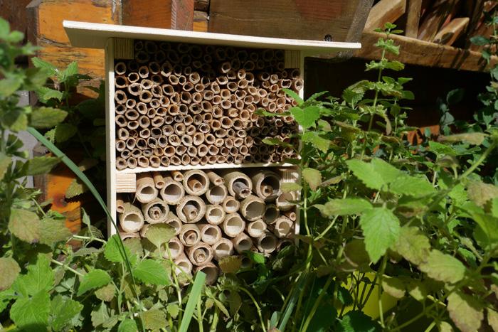 Wildbienenhotel mit Pflanzen