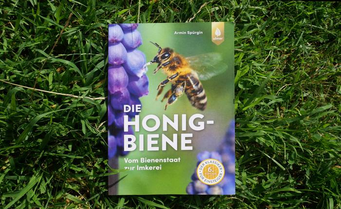Buch Die Honigbiene von Armin Spürgin Buch Cover in der Wiese